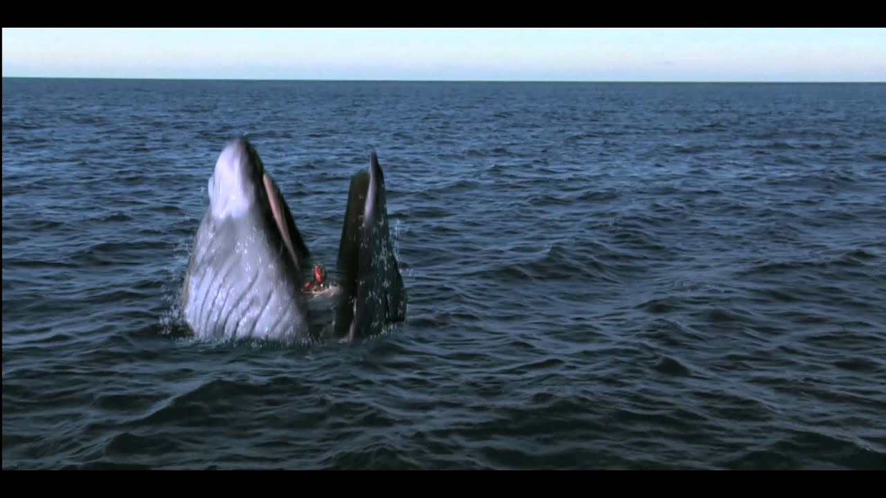Girl gets swallowed by whale viewer discretion youtube for The fish that ate the whale
