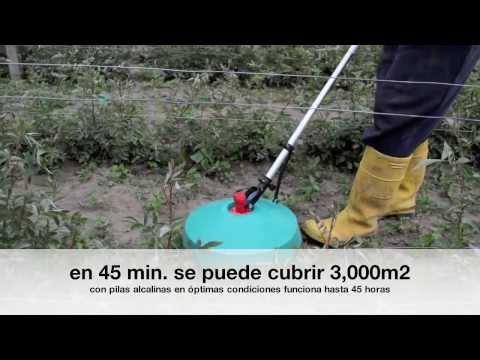 Pilvicsa prueba Pulmipur Fumigadora de herbicida, antes y después 1