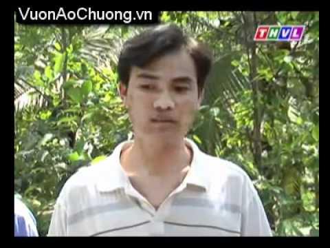 Anh Lê Chí Hưởng,Vơí Mô Hình Nuôi Rắn Mối.wmv