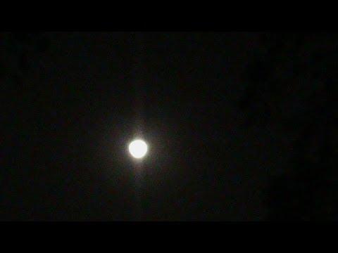 Simha Rashi 2013 2014 Predictions Leo Moon Sign Vedic Astrology