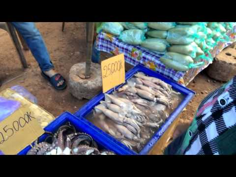 Exotic foods of Laos at the market place, Laos 2014
