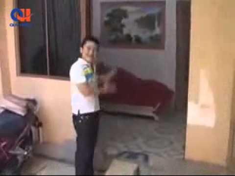Thăm nhà nghệ sỹ Anh Vũ