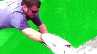 REDNECK FISHING