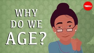 Why do our bodies age? - Monica Menesini