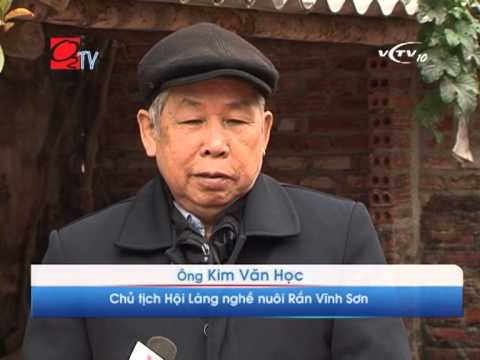Độc đáo làng nghề nuôi và cung cấp sản phẩm Rắn Vĩnh Sơn, Vĩnh Phúc