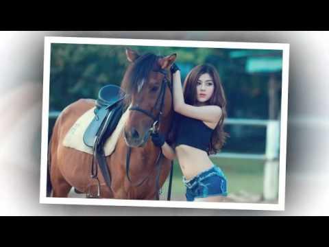 Mừng Xuân Giáp Ngọ 2014. người đẹp khoe dáng cùng ngựa quý.