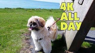 Geek Vlog #152 - Samsung Galaxy S5 4K All Day