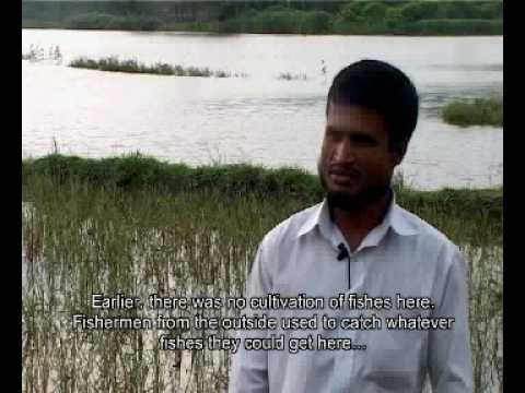 Participatory Video in Bangladesh - Fish culture in Mymensing (Edited)
