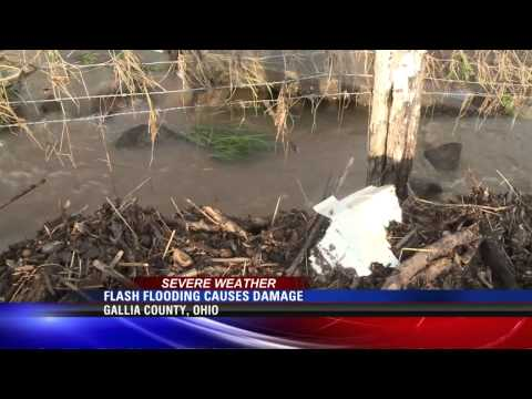 Flash Flooding Causes Damage in Gallia County - Dale Johnson WSAZ