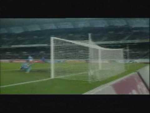 ROBERTO CARLOS   Goal Compilations