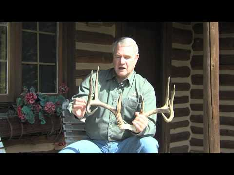 Whitetail Revolution Episode 6 – Extended Tecomate Trophy Tip