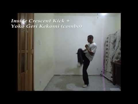 Martial Arts Combo Kicks