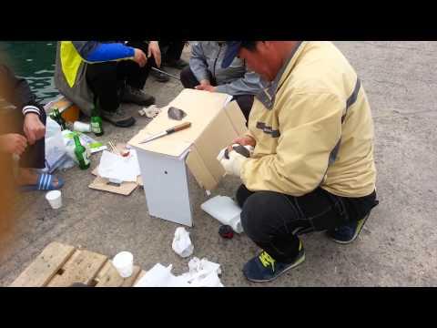 cảnh mấy người hàn quốc câu cá lên làm thịt cá ăn tại trận 24/3/2013