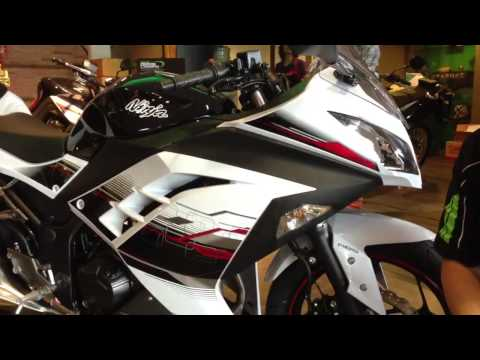 Ninja 300 First look by Real Motosports