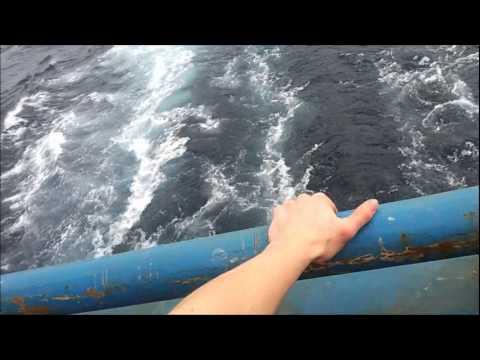 Video of my Job – Crab Fishing