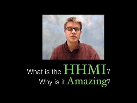 What is the HHMI?  Why is it amazing?