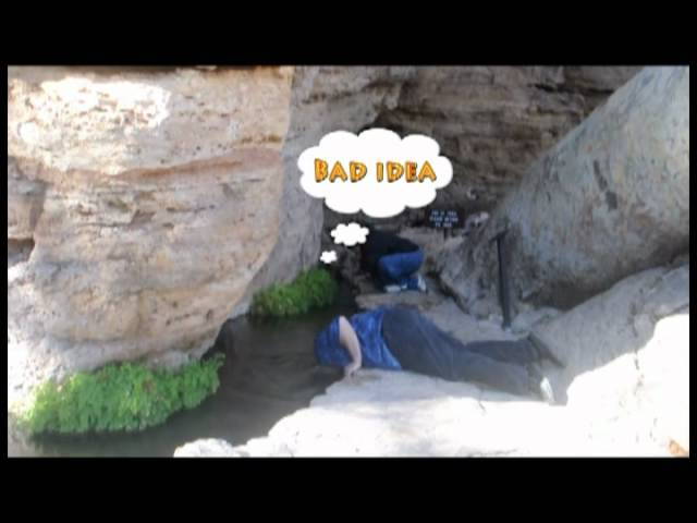 Inspector drinks arsenic and duck poop at the Montezuma Well