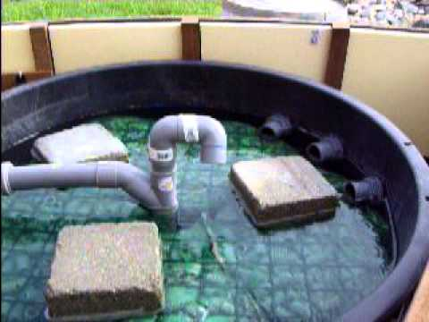 Koi pond filter diy filtration tang home made youtube for Pond filter system diy
