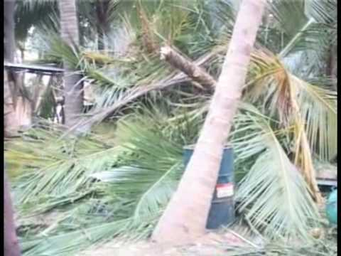 30 Tamil Families wiped out in massive attack by Sri Lankan Army in Vanni -  20090218