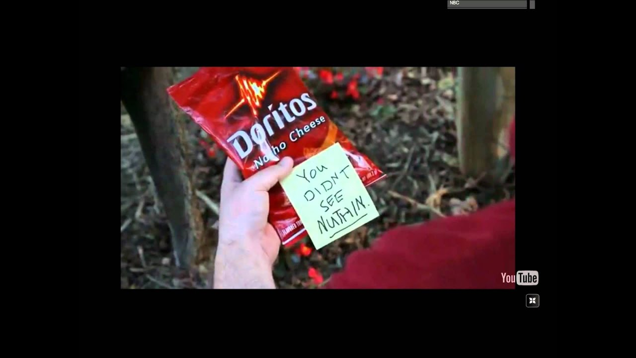Doritos Dog And Cat Commercial
