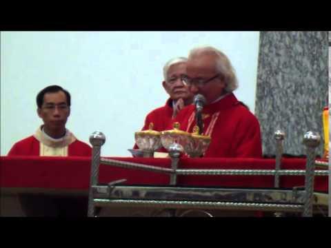 GX ThạchĐà: lễ cácthánh TửĐạo VN, 24/11/2014 (T1)