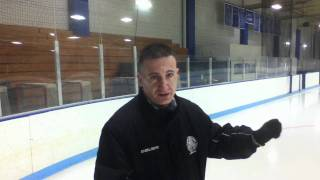 picture of Ice Skating Rink Manager