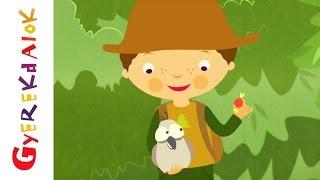 Erdő, erdő, erdő - Gyerekdal