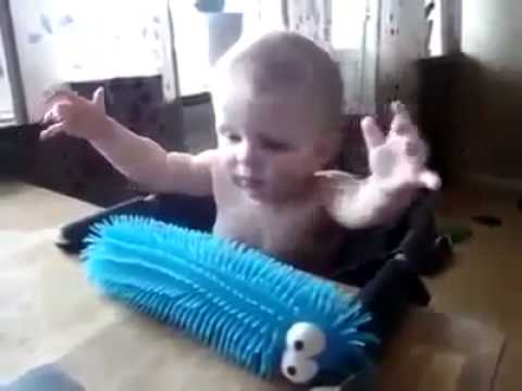 funny video babie