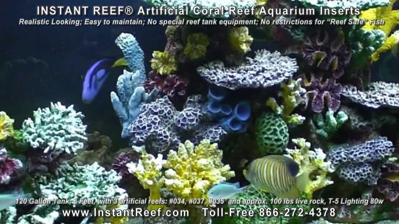 Saltwater fish tank decorations in 120 gallon marine fish for Artificial coral reef aquarium decoration