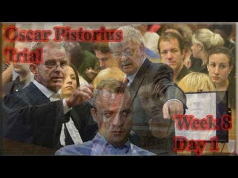 Oscar Pistorius Trial: Monday 12 May 2014, Session 1