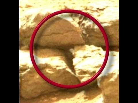 Mars Curiosity,Possible Snake,Anomalies 2013