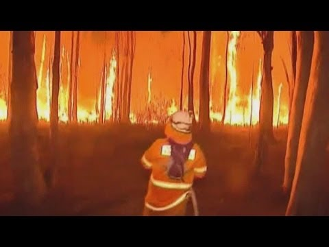 Australia bushfires: Firefighters face 30m high flames in Lake Macquarie