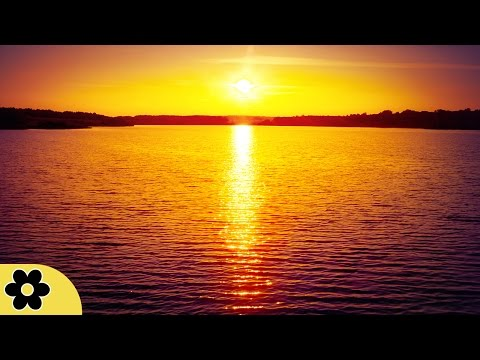 8 Hour Sleep Music, Calm Music for Sleeping, Delta Waves, Insomnia, Relaxing Music, ✿3058C