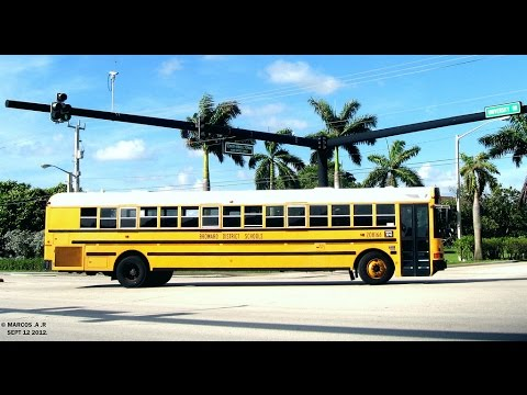 Broward District School Buses ,BCT buses and City of Pembroke Pines Cutaways in action