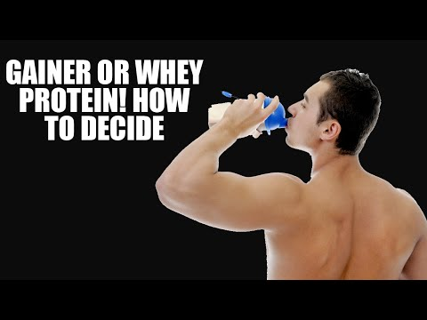 Gainers or whey protein, how to decide