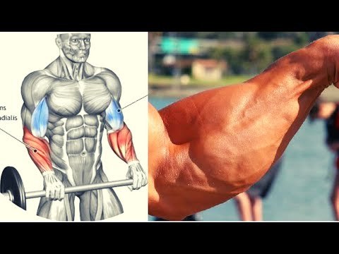 8 BEST FOREARMS EXERCICES  / MUSCULATION AVANT BRAS