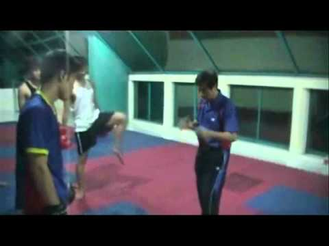 Martial Arts odyssey: Vo Thai Lan Saigon (Part 1)