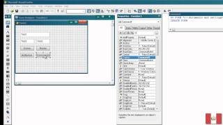 Visual FoxPro 9.0: Sencilla Aplicacion