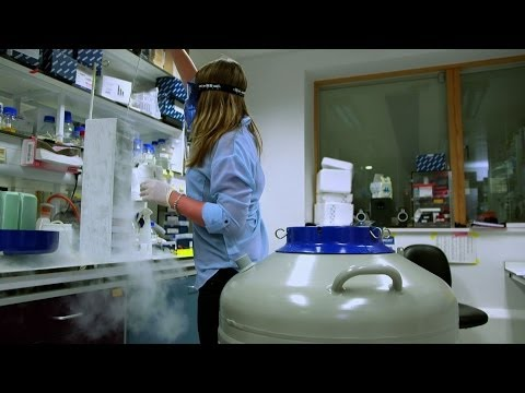 Are we close to finding a cure for Alzheimer's? - Bang Goes the Theory - BBC One