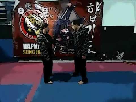 Hapkido Sungjakwan ( técnicas básicas )