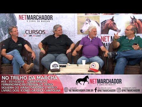 #53 - 15/10/2018 -  PLÍNIO SIQUEIRA E MARCO LIVRÃO - MANGALARGA MARCHADOR