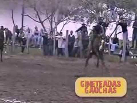 Os Golpes do Conhaque - DVD - Gineteadas Gauchas - Vol 1