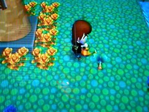 animal crossing city folk how to make a money tree
