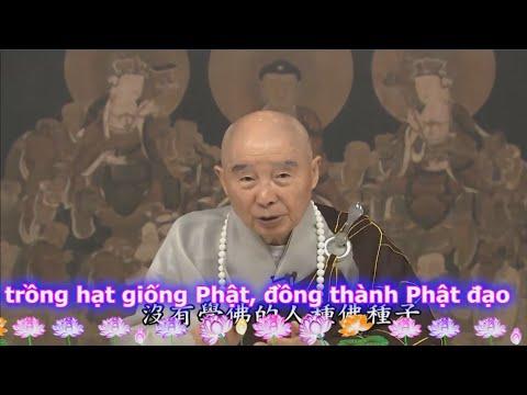 TĐ:509-Rộng rãi gieo trồng hạt giống Phật, đồng thành Phật đạo