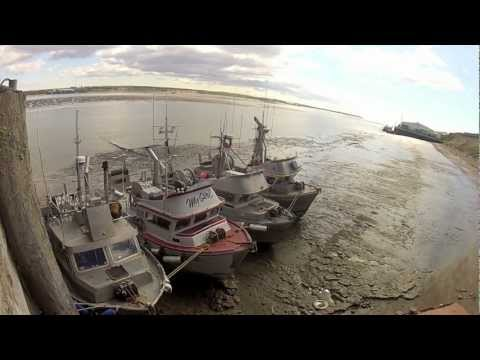 Bristol Bay Fishing – 2012 (GoPro HD)