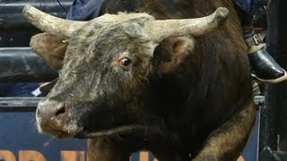 EVENT REPLAY: 2013 Monster Energy Invitational - Saturday (PBR)