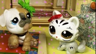 Puppy On The Way Mommies Part 18 Littlest Pet Shop