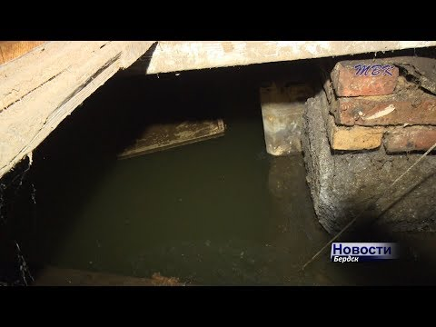 Дома на воде: грунтовые воды топят и разрушают частный сектор Бердска