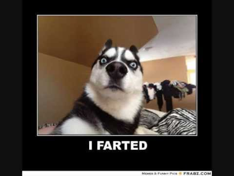 The Best Fart Sound Effects Ever Youtube