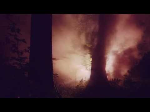Thumbnail of video Junip - Walking Lightly (Official Video)